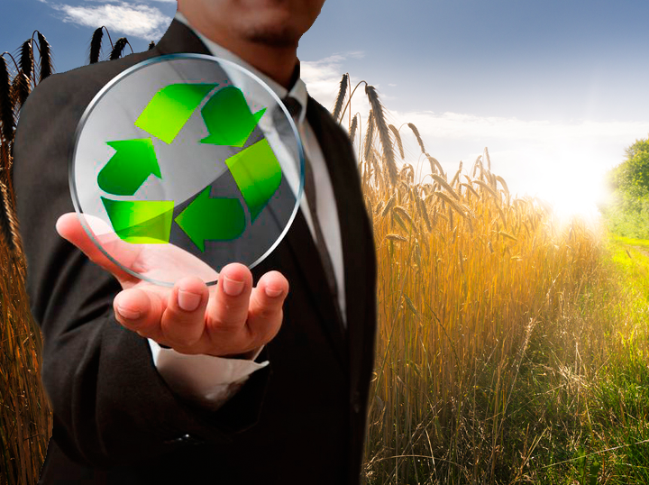 placas-solares-murcia-alicante-ecoinnovar-energias-renovables3
